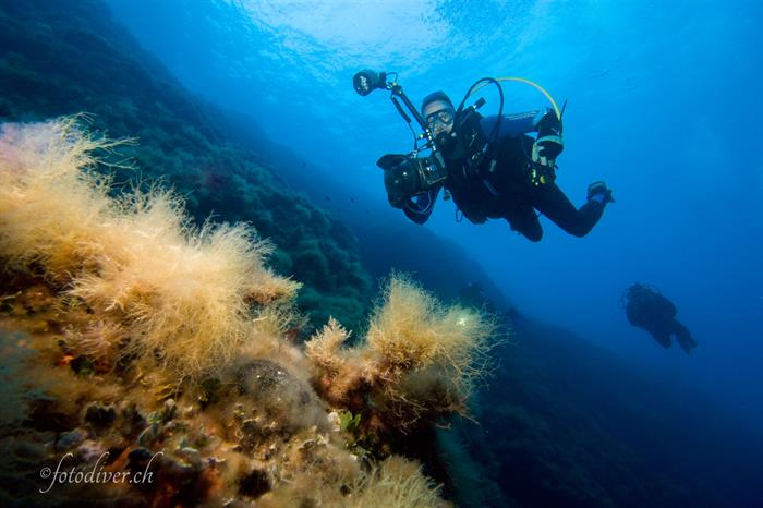 Scuba Diving the Tuscan Archipelago - Norseman
