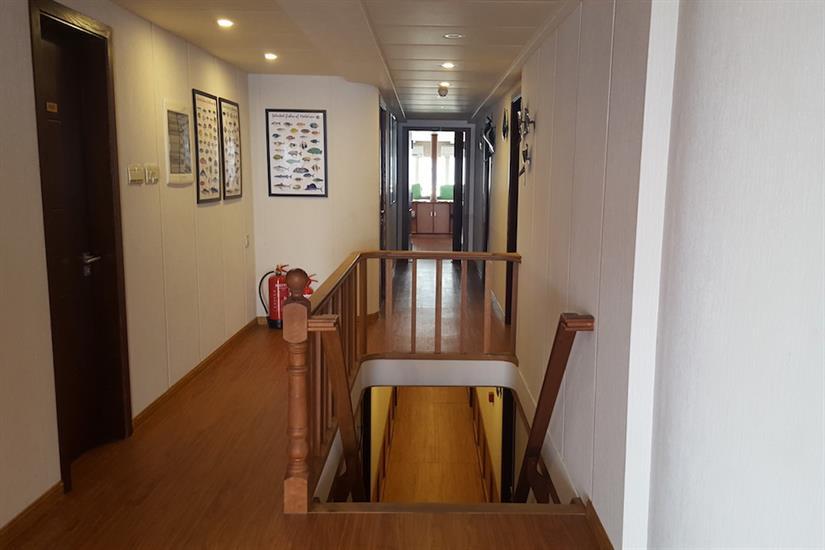 Carpe Novo Hallway