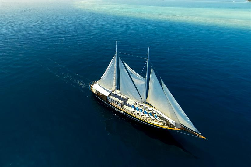 Dream Voyager Liveaboard Maldives