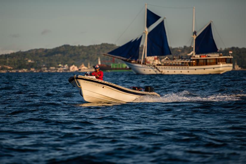 MV Samambaia - Tender