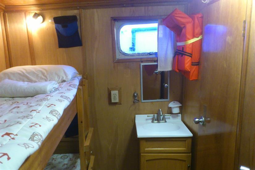 Twin Bunk Cabin - Sea Escape Liveaboard