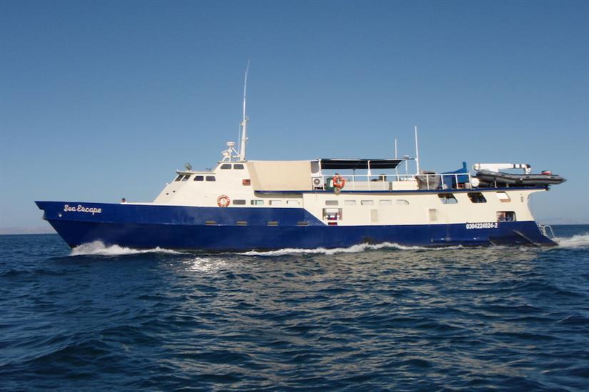 Sea Escape Liveaboard Guadalupe