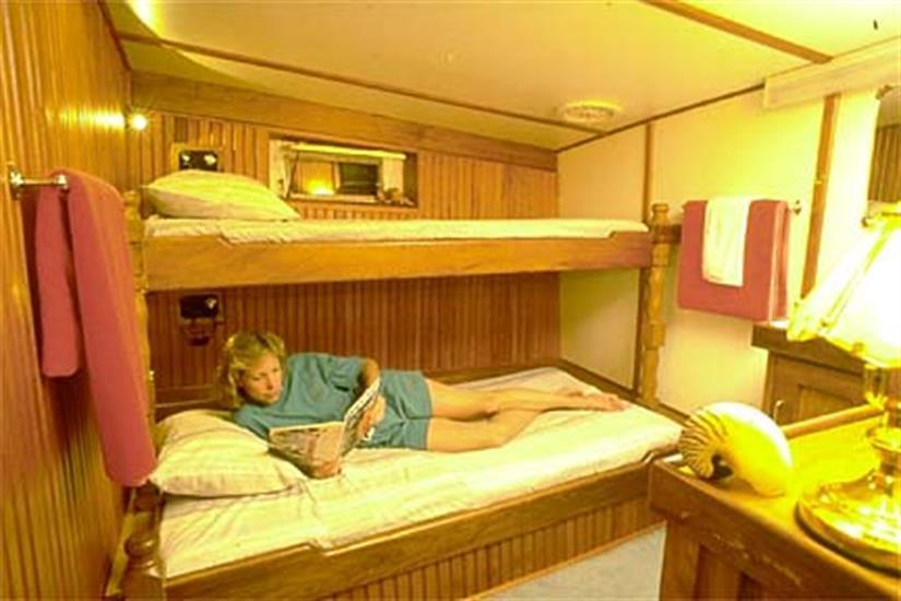 Standard Base Cabin