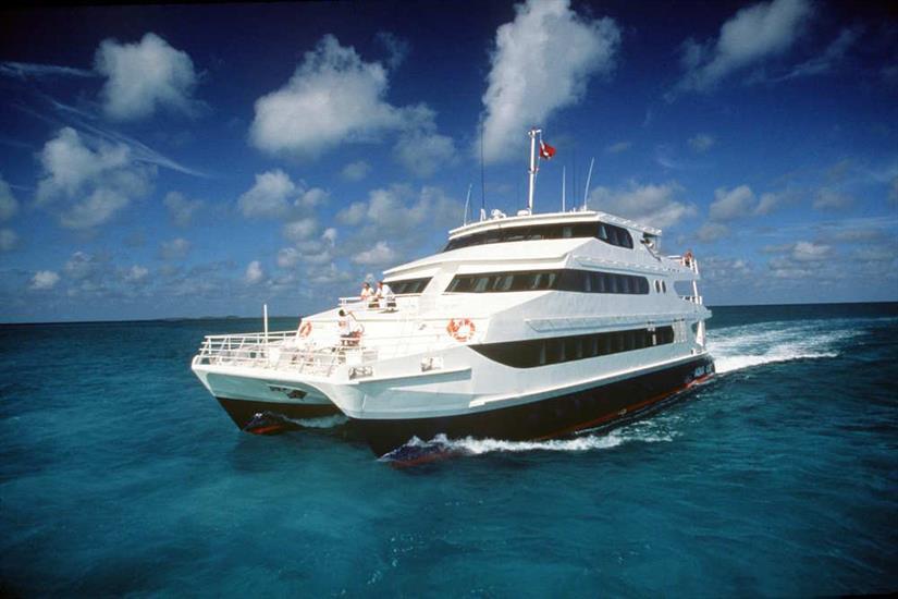 Aqua Cat Bahamas
