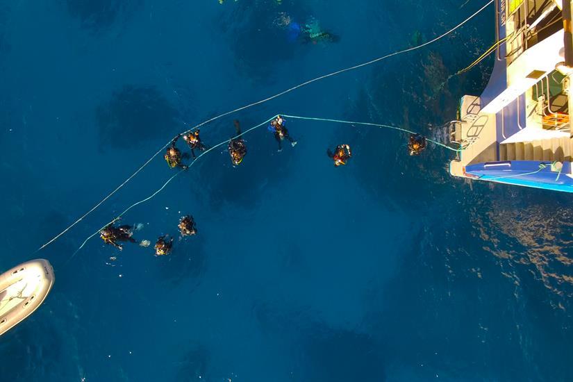 Divers returning to the Aqua Cat.