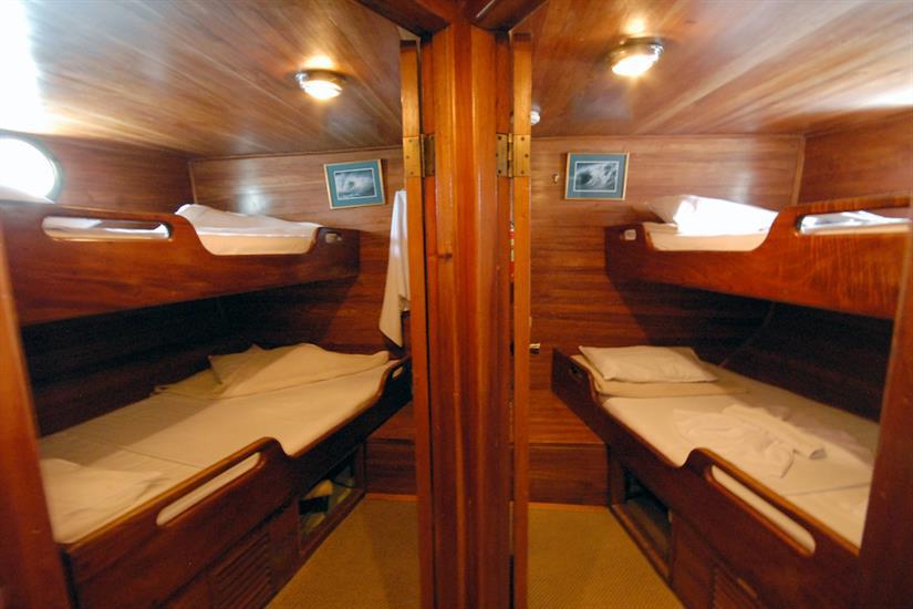 Twin Cabins Cachalote Galapagos