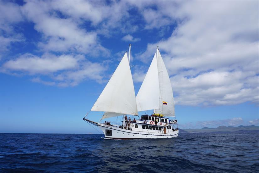 Cachalote Sailing Yacht Galapagos