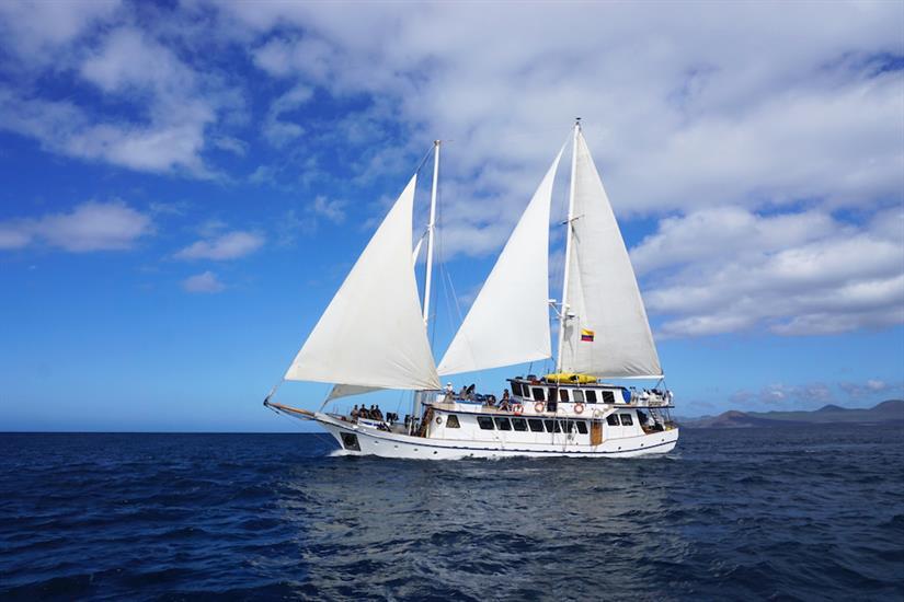 Cachalote Cruise Galapagos