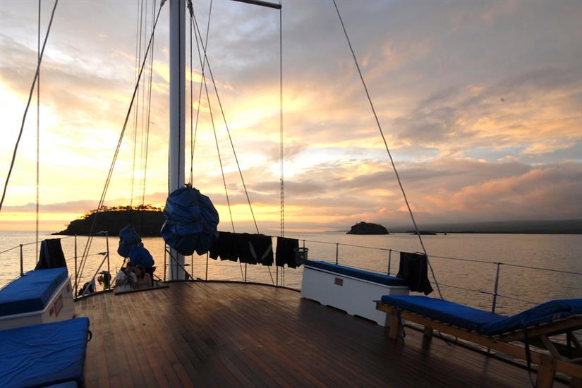 Cachalote Galapagos at Sunset