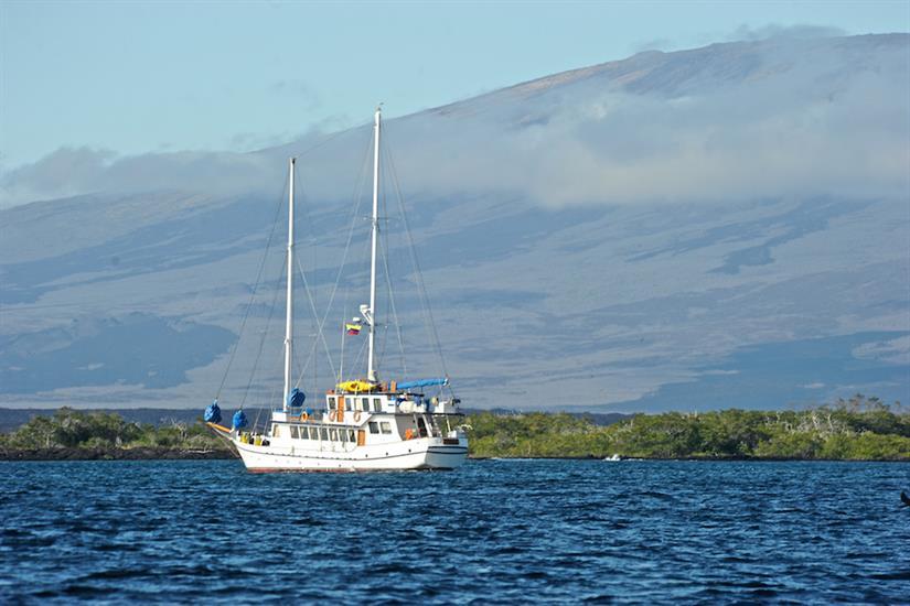 Cachalote Galapagos Expeditions