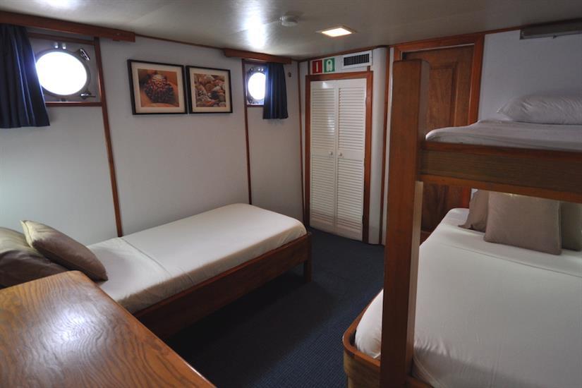 Triple Cabin 1 - Beluga Galapagos