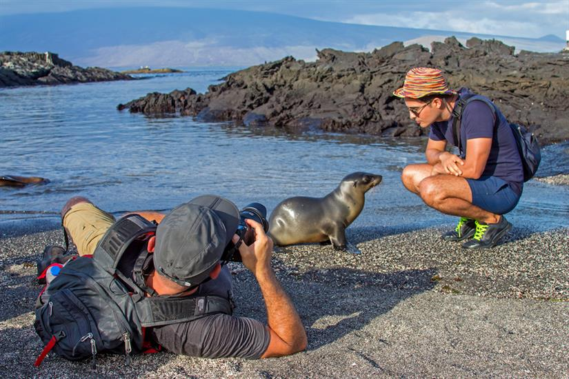 Up close and personal with Sea Lion pups