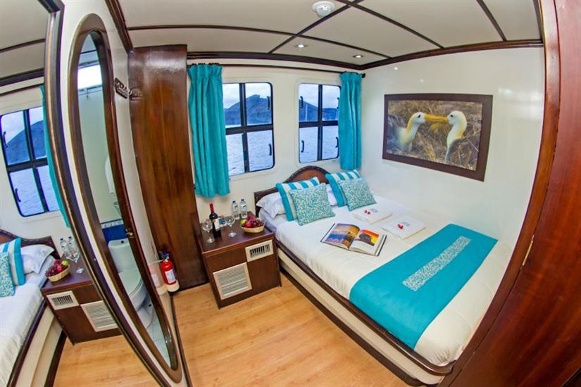Matrimonial cabin - Archipell II Galapagos