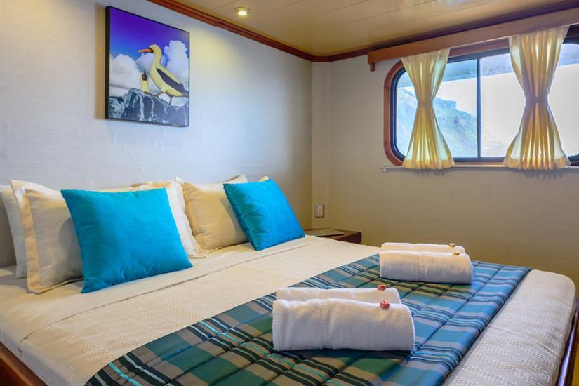 Upper Deck Double Suite