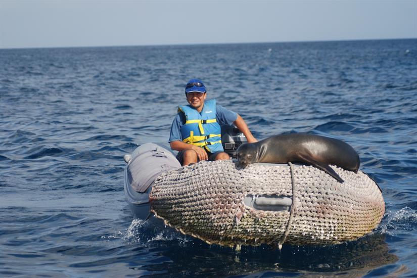 Get up close with Galapagos wildlife