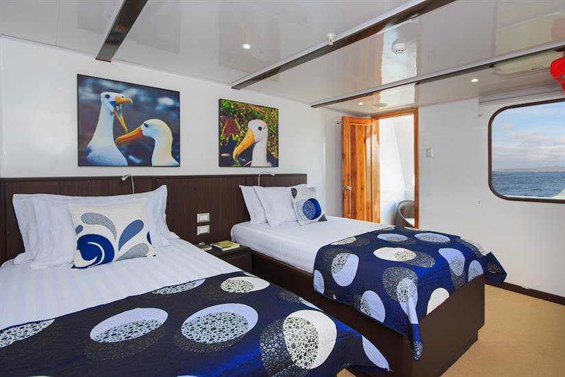 Junior Suite - Natural Paradise Yacht Galapagos