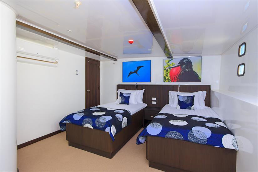 Cabin 5 - Natural Paradise Yacht Galapagos
