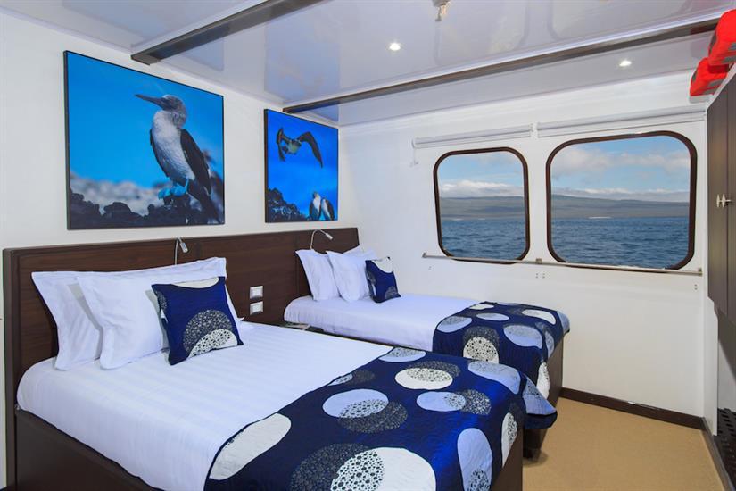 Cabin 6 - Natural Paradise Yacht Galapagos