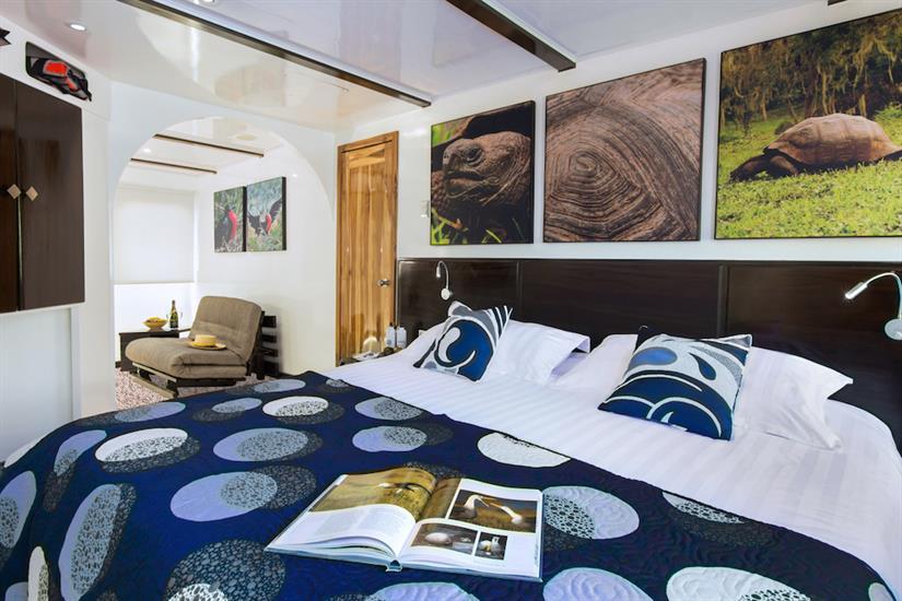 Cabin 1 - Natural Paradise Yacht Galapagos