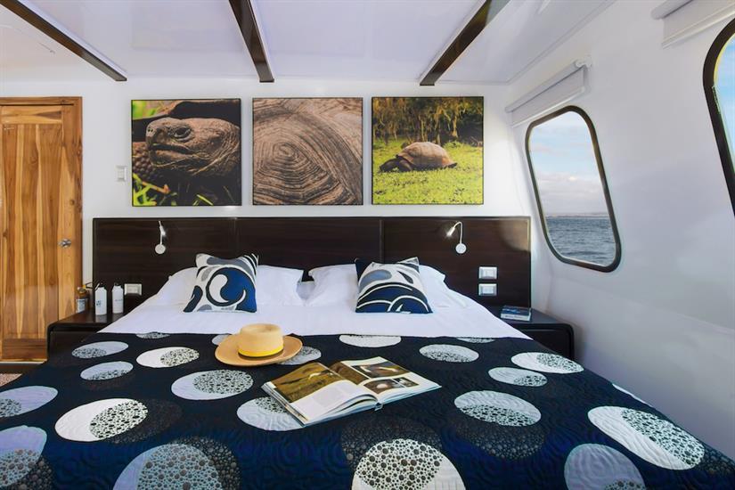 Cabin 2 - Natural Paradise Yacht Galapagos