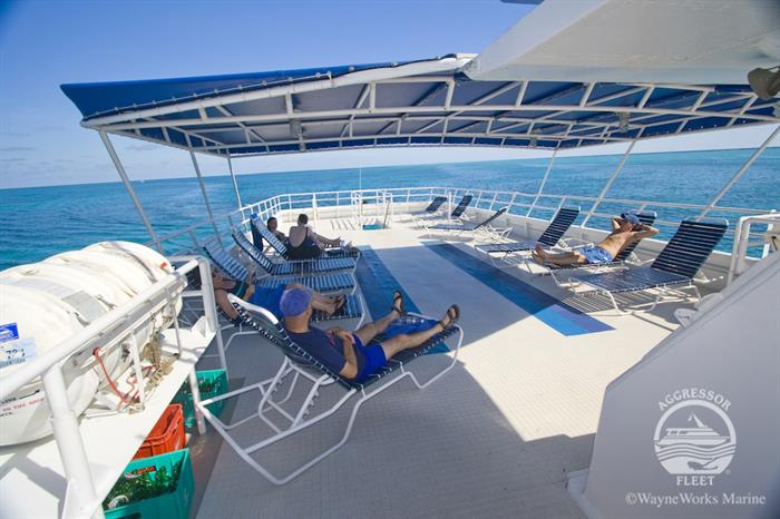 Sun Deck - Belize Aggressor IV