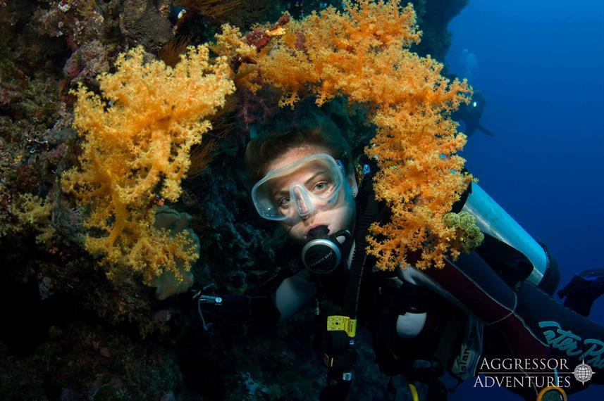 #diving - Palau Aggressor II