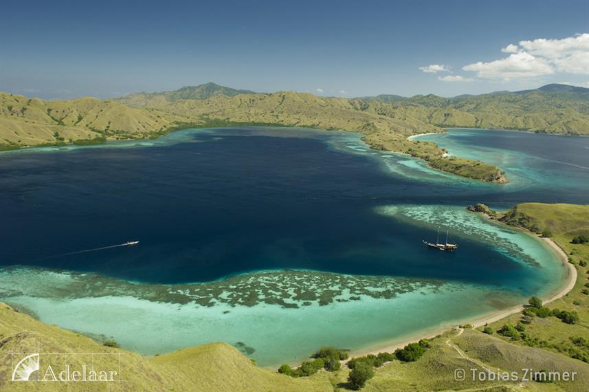 Komodo Viewpoint - Adelaar Indonesia
