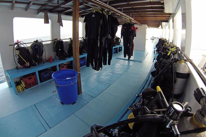 Diving Dhoni - Amba Liveaboard