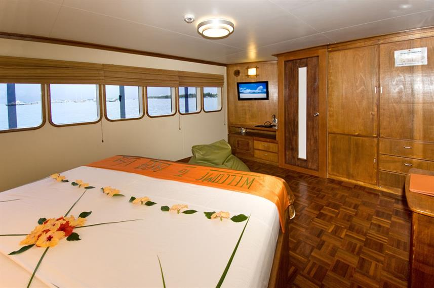 Suite - Carpe Vita Liveaboard