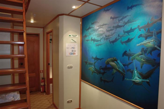 Argo Liveaboard Decor