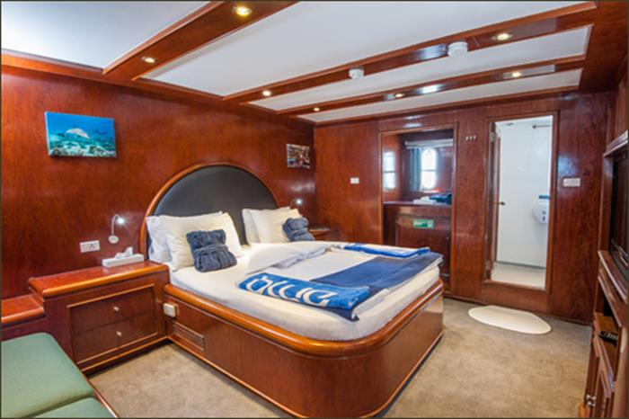 Blue Fin Liveaboard - King Suite (Main Deck)