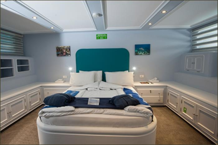 King Suite (Lower Deck) - Blue Fin Liveaboard