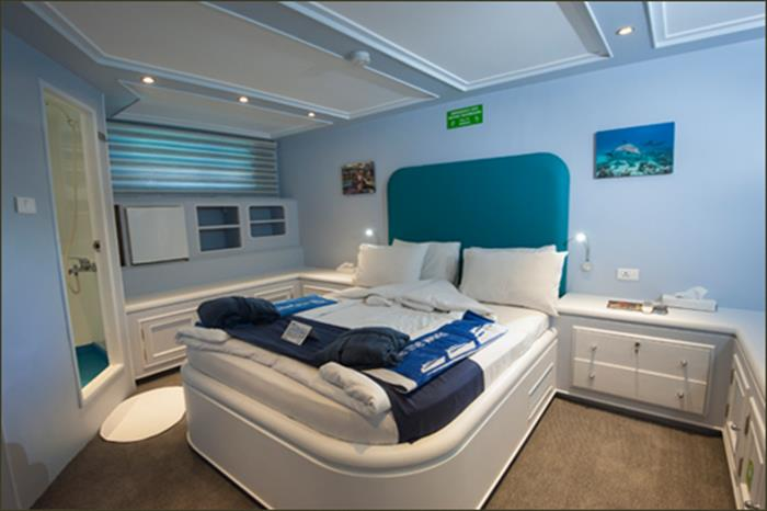 Blue Fin Liveaboard King Suite (Lower Deck)