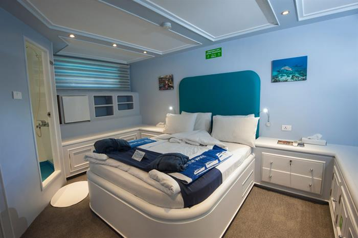Suite - Blue Fin Liveaboard