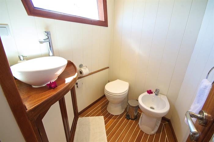 Master suite bathroom facilities onboard - Galatea Liveaboard