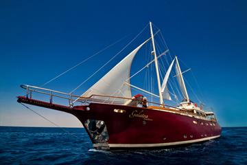 Galatea Liveaboard