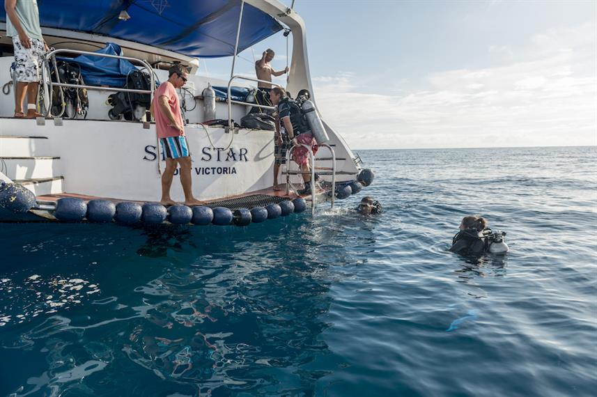 Duikplatform - Sea Star Liveaboard