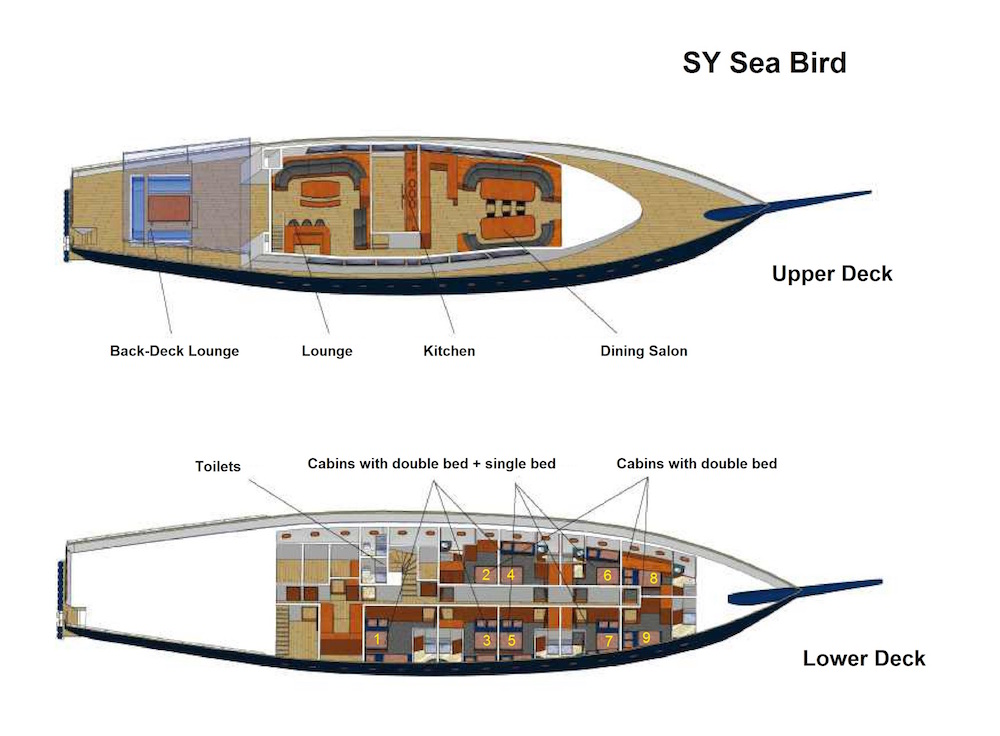 Sea Bird Liveaboard Deck Plandisposizione del ponte