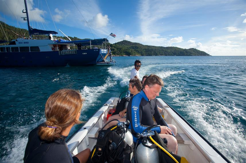 #divetender - Sea Bird Liveaboard