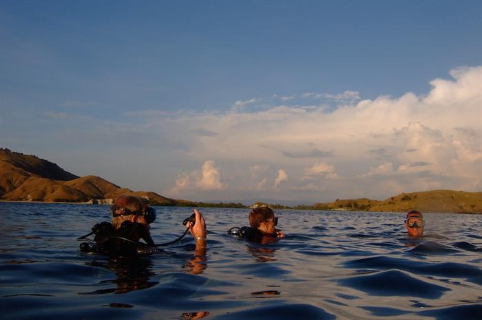 Diving in Komodo with Tiger Blue