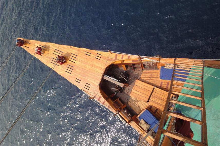 #arialview - Tiger Blue Liveaboard