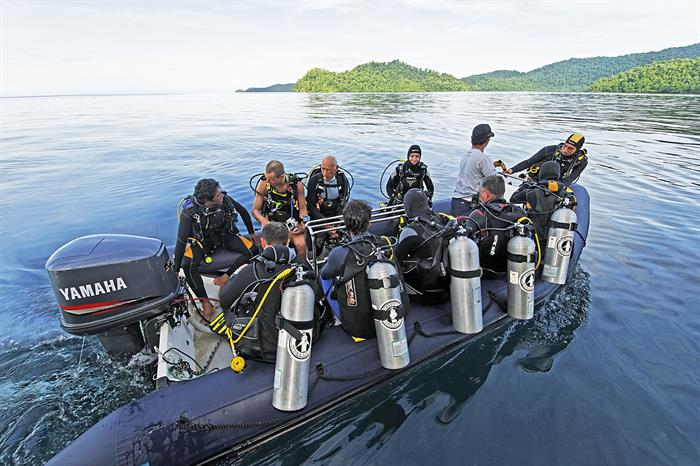 Dive Tender - Amira Indonesia