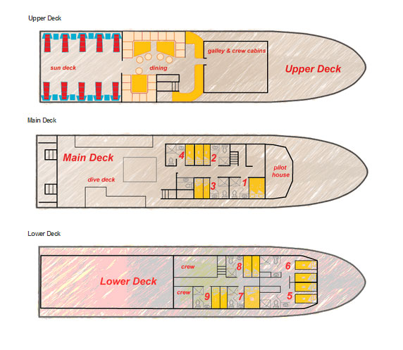 Caribbean Explorer II Deck Plan floorplan