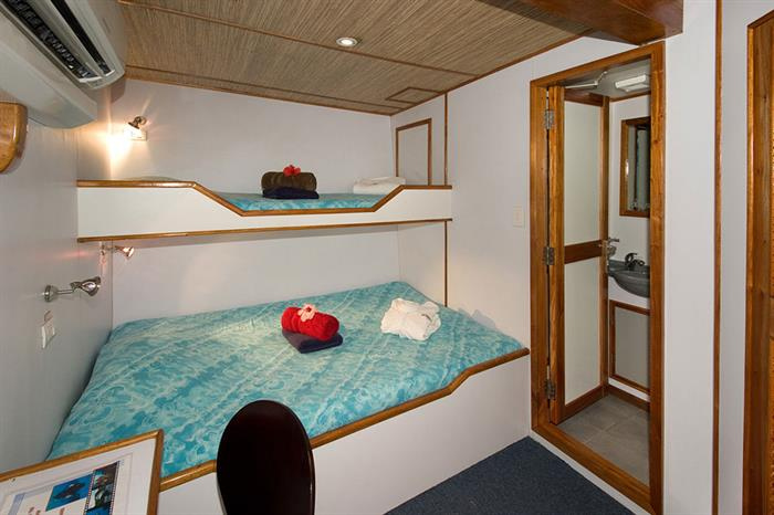 Deluxe Cabin - Ocean Hunter 3