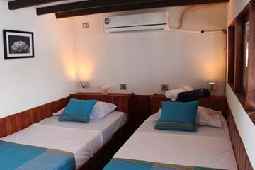 Trevally Deluxe Twin Cabin