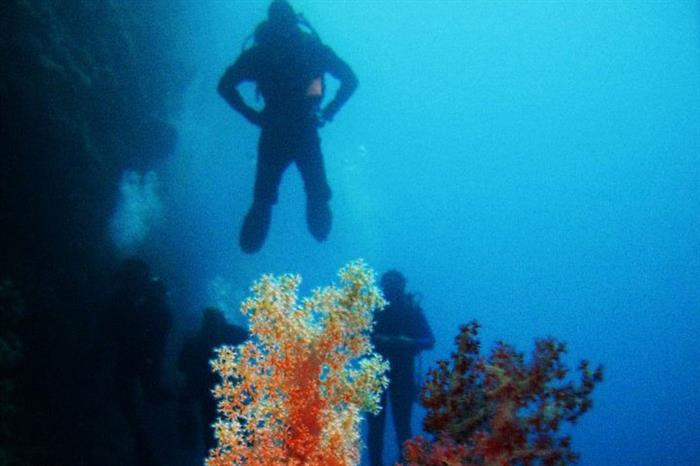 #diving - South Moon