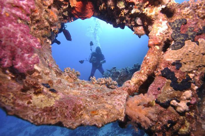 #diving - South Moon Liveaboard