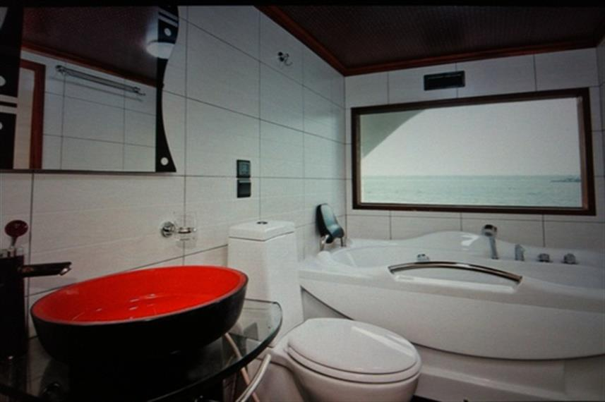 En-suite facilities on Princess Handy