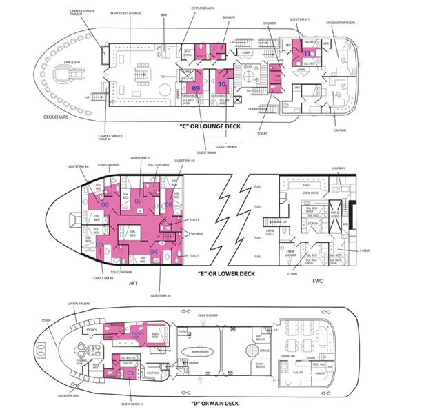 Thorfinn floorplan