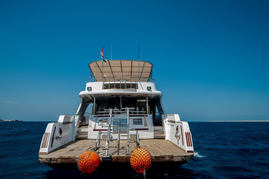Dive Deck - Golden Dolphin Egypt Liveaboard